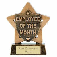 Mini Star Employee Of The Month 3.25 Inch (8cm) - New 2019