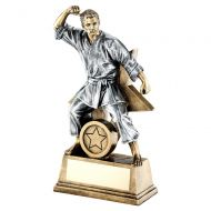 Bronze Gold Pewter Male Martial Arts Figure With Star Backing Trophy 9in : New 2019