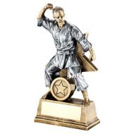 Bronze Gold Pewter Female Martial Arts Figure With Star Backing Trophy - New 2019