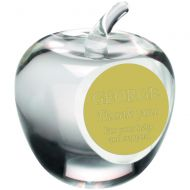 Clear Glass Apple Paperweight Trophy 3.5in