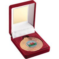 Red Velvet Box Medal Wales Trophy Bronze 3.5in