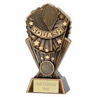 Cosmos Squash 7 Inch (17.5cm) - New 2019