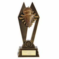 Peak Netball Trophy Award 8 Inch (20cm) : New 2020