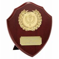Triumph4 Presentation Shield Trophy Award 4 Inch (10cm) : New 2020