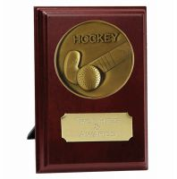 Vision Clayshooting Trophy Award Presentation Plaque Trophy Award 4 Inch (10cm) : New 2020