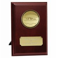 Vision Netball Trophy Award Presentation Plaque Trophy Award 4 Inch (10cm) : New 2020