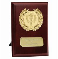 Prize4 Presentation Plaque Trophy Award 4 Inch (10cm) : New 2020