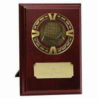 Varsity Basketball Trophy Award Presentation Plaque Trophy Award 5 Inch (12.5cm) : New 2020