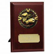 Varsity Boxing Trophy Award Presentation Plaque Trophy Award 5 Inch (12.5cm) : New 2020