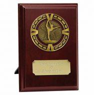 Varsity Gymnastics Trophy Award Presentation Plaque Trophy Award 5 Inch (12.5cm) : New 2020