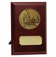 Vision Darts Trophy Award Presentation Plaque Trophy Award 6 inch (15cm) : New 2020