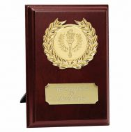 Prize6 Presentation Plaque Trophy Award 6 inch (15cm) : New 2020