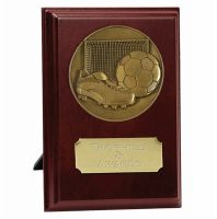 Football Trophy Award Presentation Plaque Trophy Award 7 inch (17.5cm) : New 2020