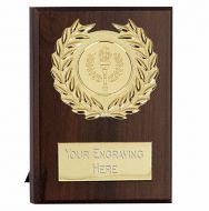 Maxi Target Plaque Gold 4 Inch (10cm) - New 2019