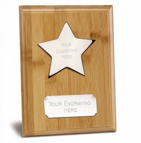 Bamboo Star Presentation Plaque Trophy Award 8 7/8 x 6 7/8 Inch (22.5 x 17.5cm) : New 2020